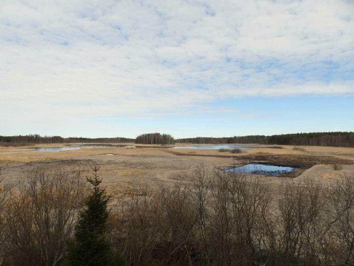 Kangasniemen Pukkiselkä on soistuva, matala järvi, jossa pesii runsas linnusto. Arvokkaalla luonnonsuojelukohteella on lintutorni.
