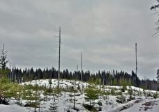 Reinikkalan kaakkoispuolinen Kyöpelinvuori on pohjoisesta katsottuna matala mäki. Mäellä on linkkimasto, joka näkyy kuvassa oikealla.